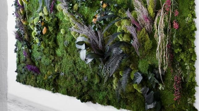 jardines verticales con planta liofilizada outdoordeco